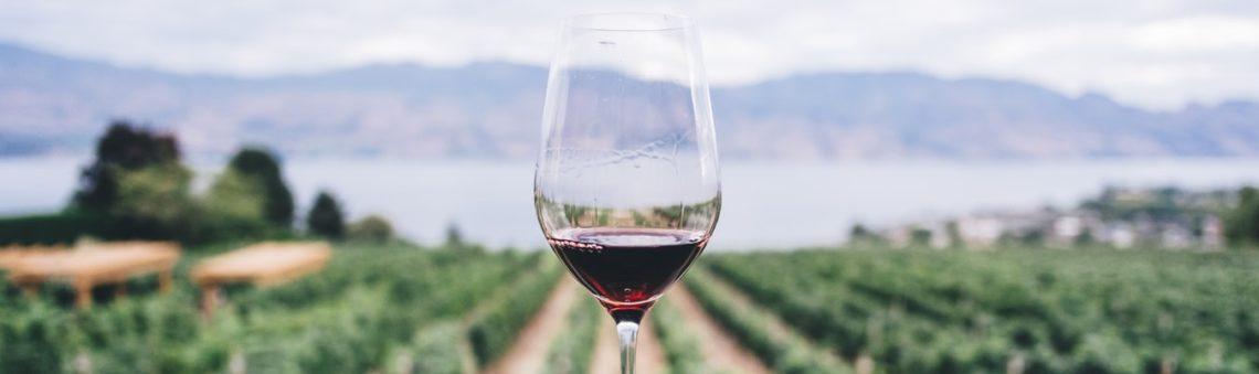 [ÉVÉNEMENT] Dégustation de vins Bulgares #2 Le 26/01/2019